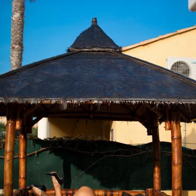 R5 village villa palmerais 15